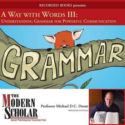 A Way With Words III: Grammar Audiobook, by Michael Drout
