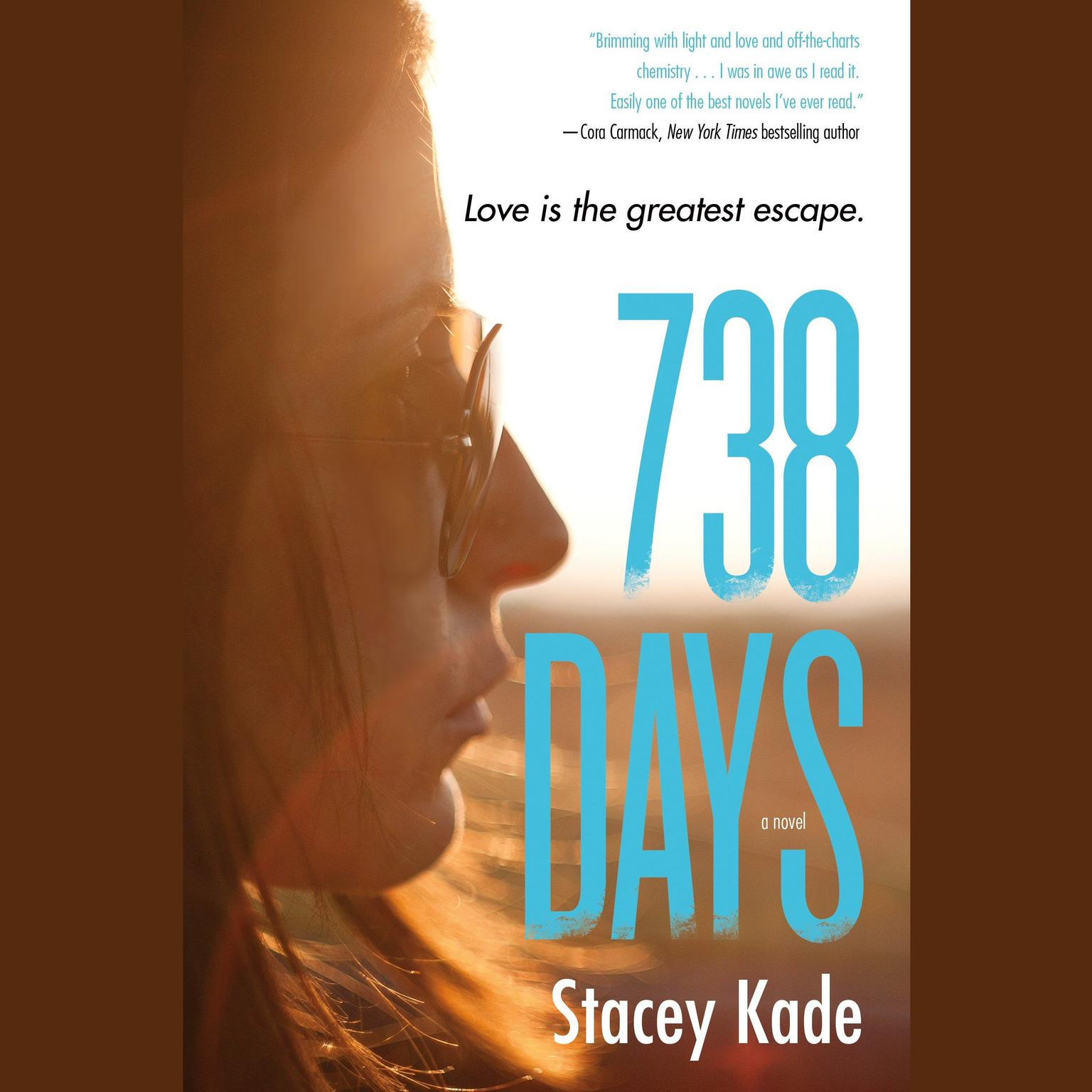 Printable 738 Days: A Novel Audiobook Cover Art