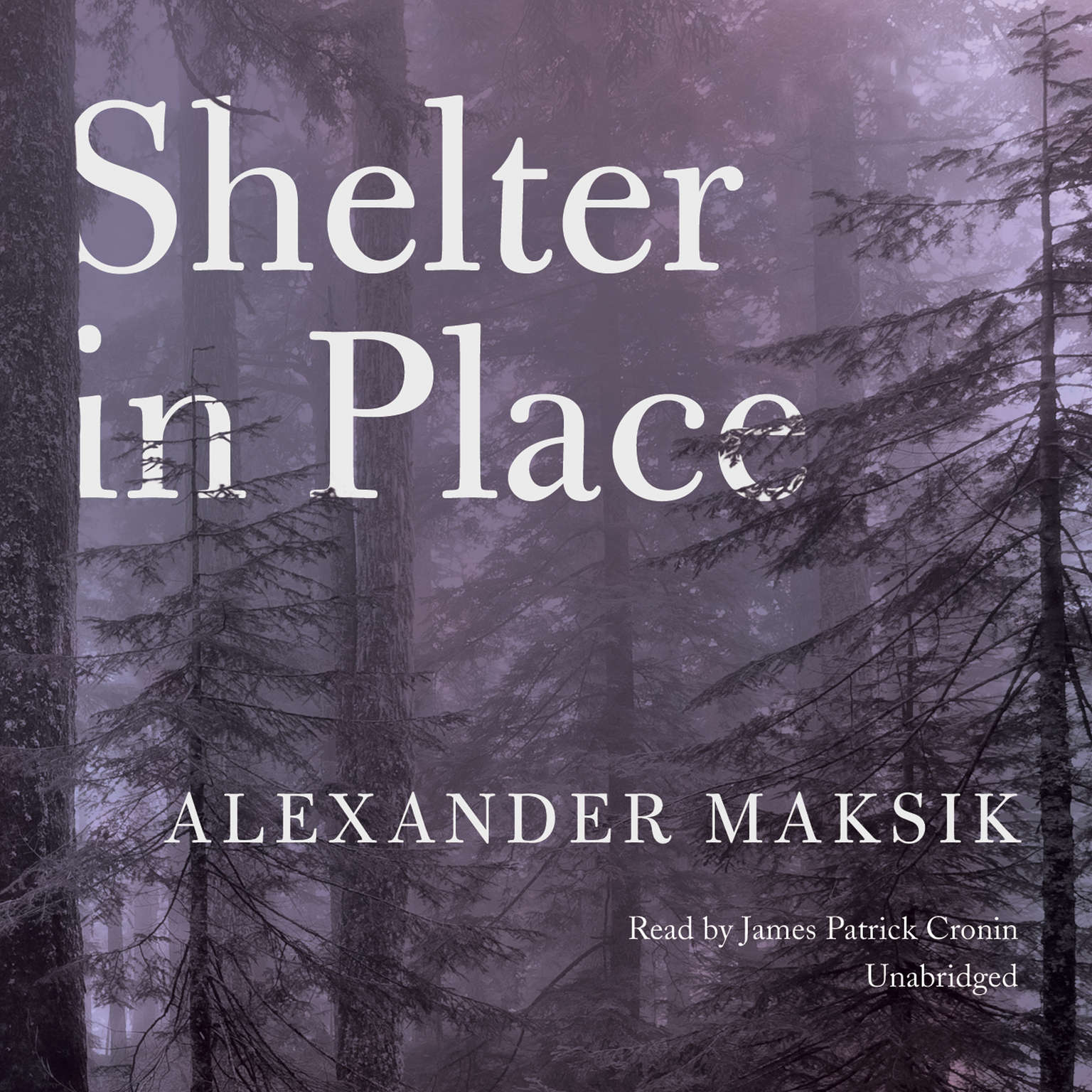 Printable Shelter in Place Audiobook Cover Art