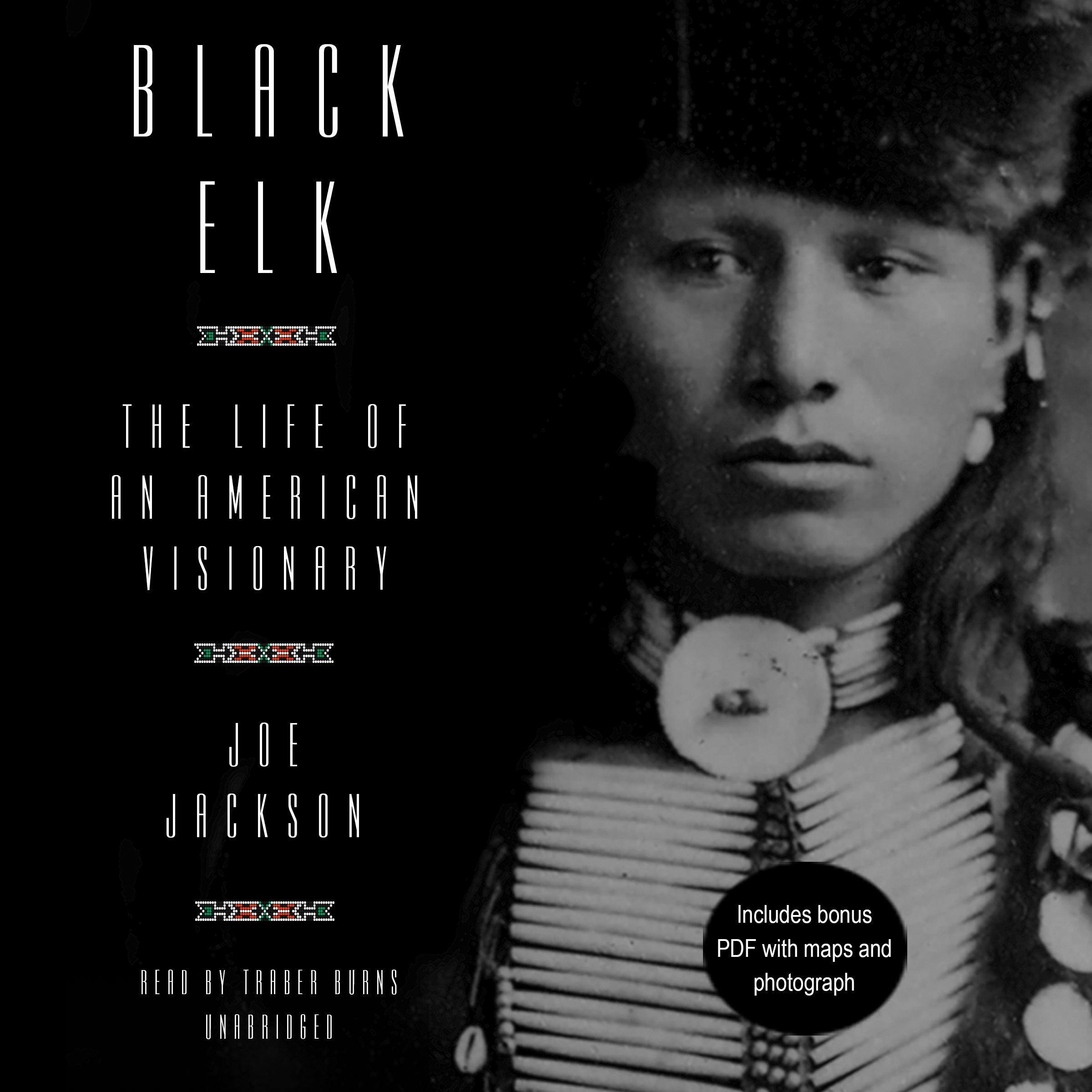 Printable Black Elk: The Life of an American Visionary Audiobook Cover Art