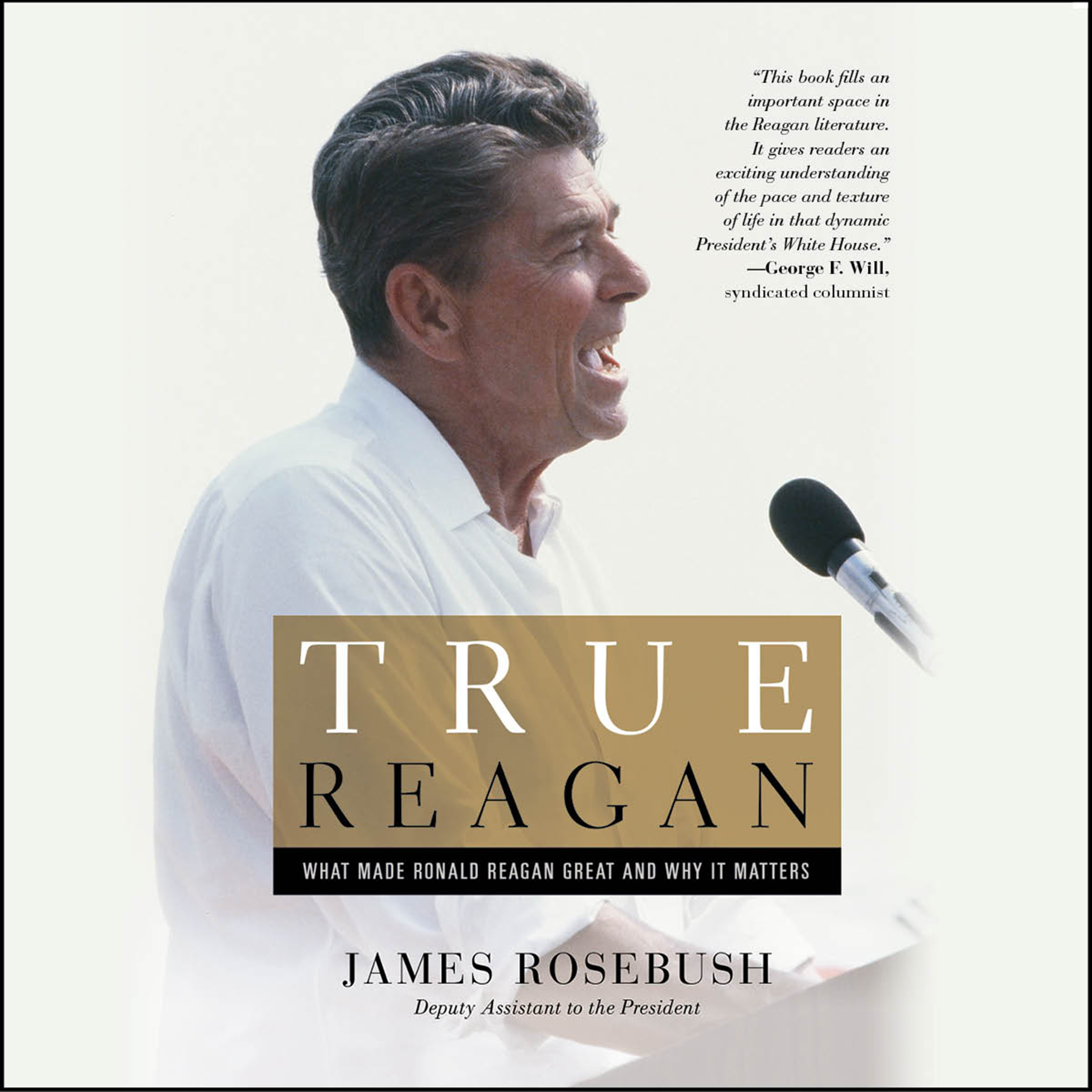 Printable True Reagan: What Made Ronald Reagan Great and Why It Matters Audiobook Cover Art