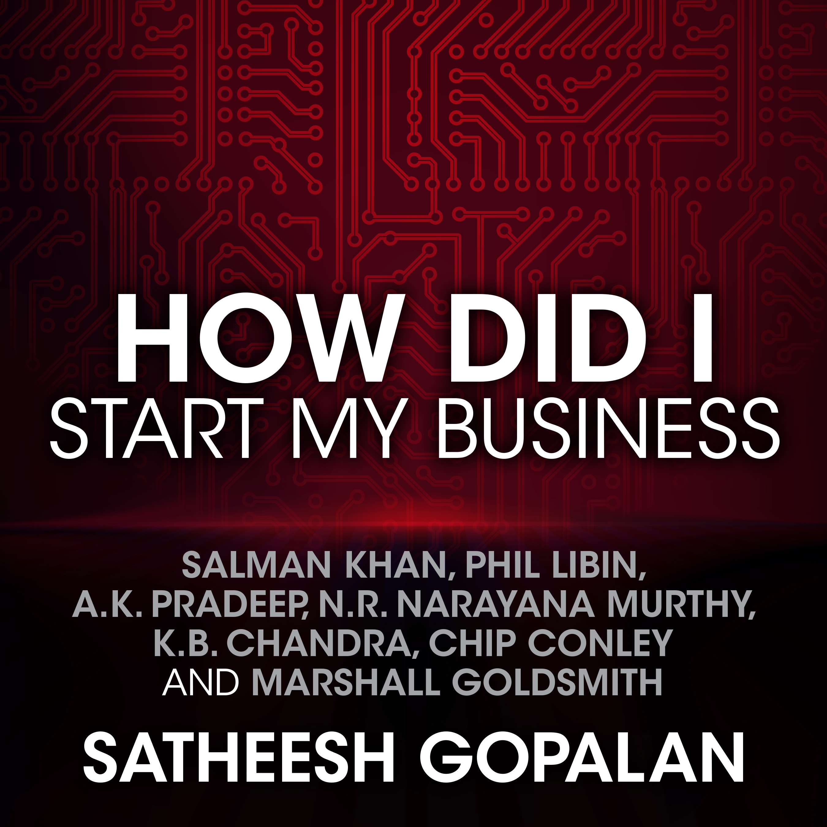 Printable How Did I Start My Business Audiobook Cover Art
