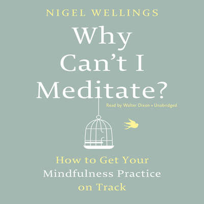 Why Can't I Meditate?: How to Get Your Mindfulness Practice on Track Audiobook, by Nigel Wellings