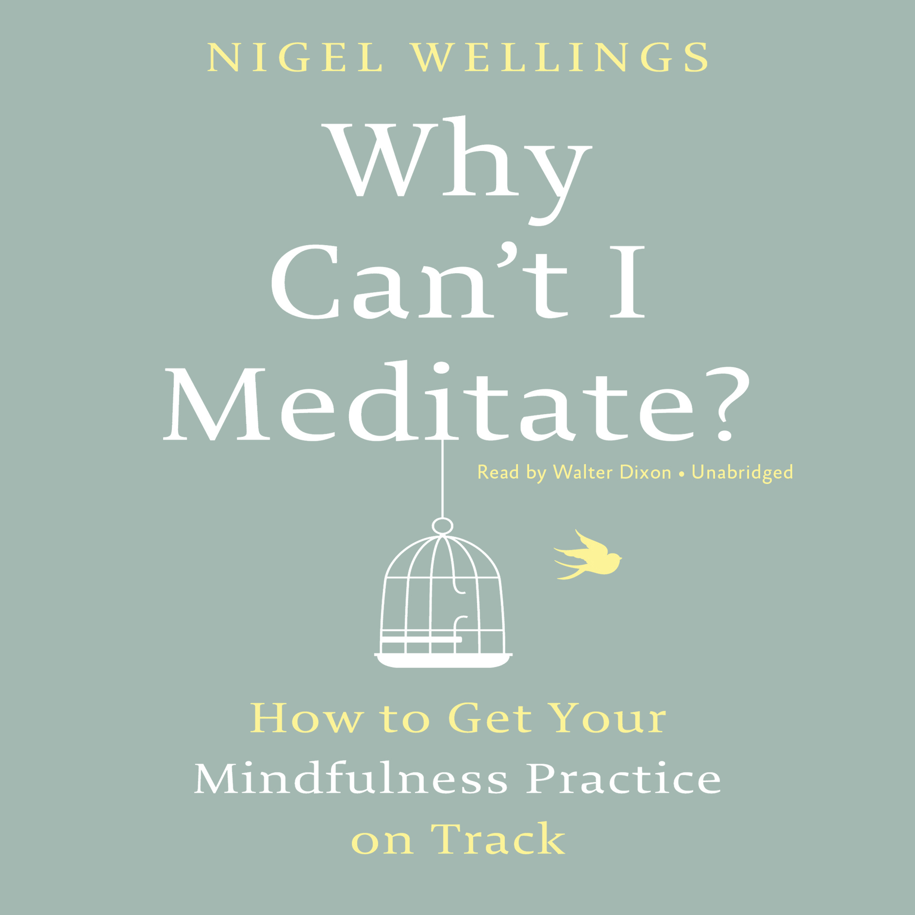 Printable Why Can't I Meditate?: How to Get Your Mindfulness Practice on Track Audiobook Cover Art