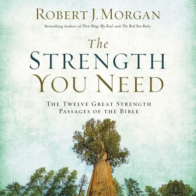 The Strength You Need: The Twelve Great Strength Passages of the Bible Audiobook, by