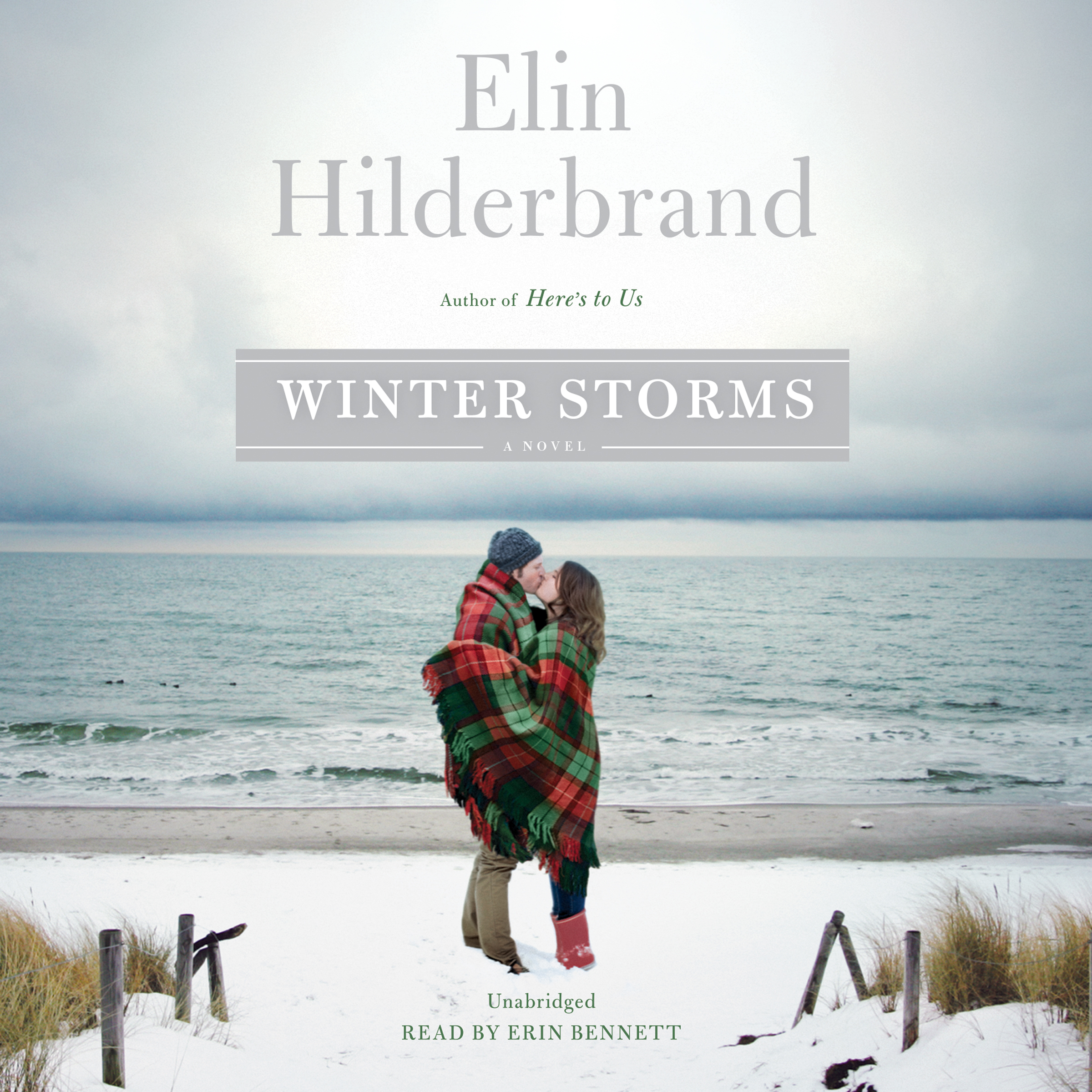 Printable Winter Storms Audiobook Cover Art