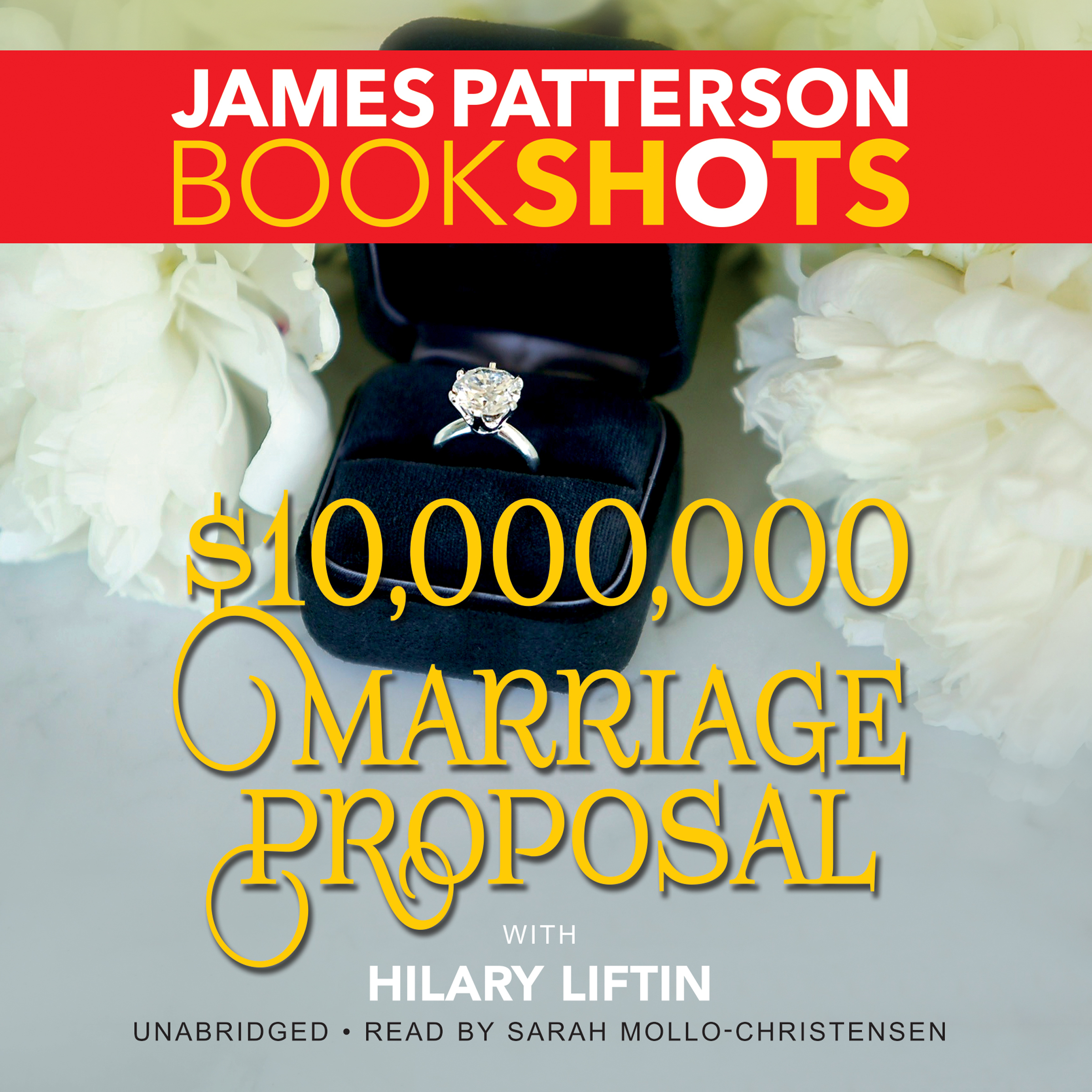 Printable $10,000,000 Marriage Proposal Audiobook Cover Art