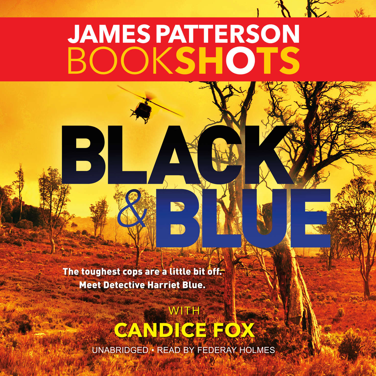 Printable Black & Blue Audiobook Cover Art