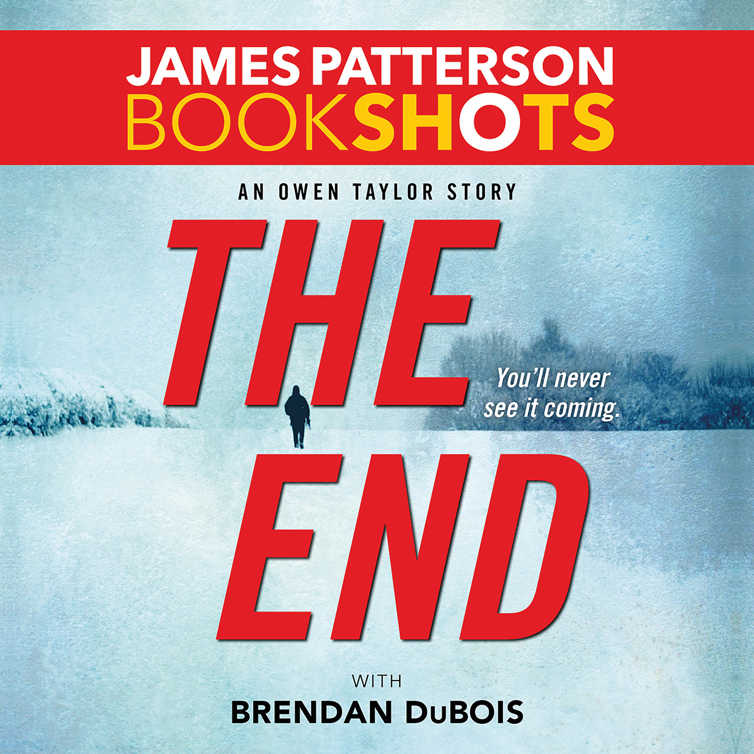 Printable The End: An Owen Taylor Story Audiobook Cover Art