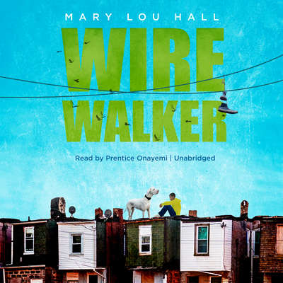 Wirewalker Audiobook, by Mary Lou Hall