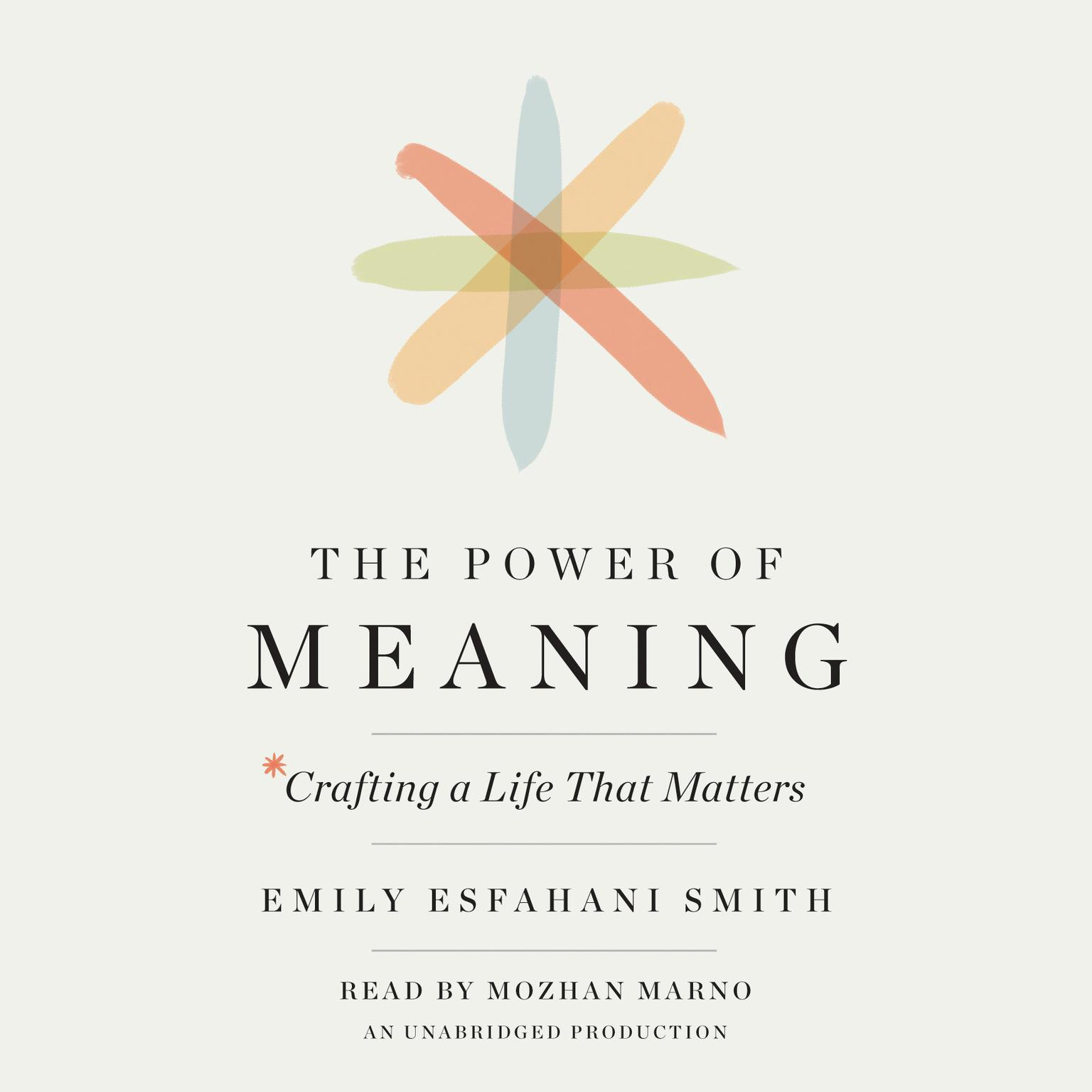 Printable The Power of Meaning: Crafting a Life That Matters Audiobook Cover Art