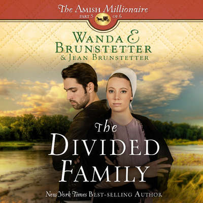 The Divided Family Audiobook, by Wanda E. Brunstetter