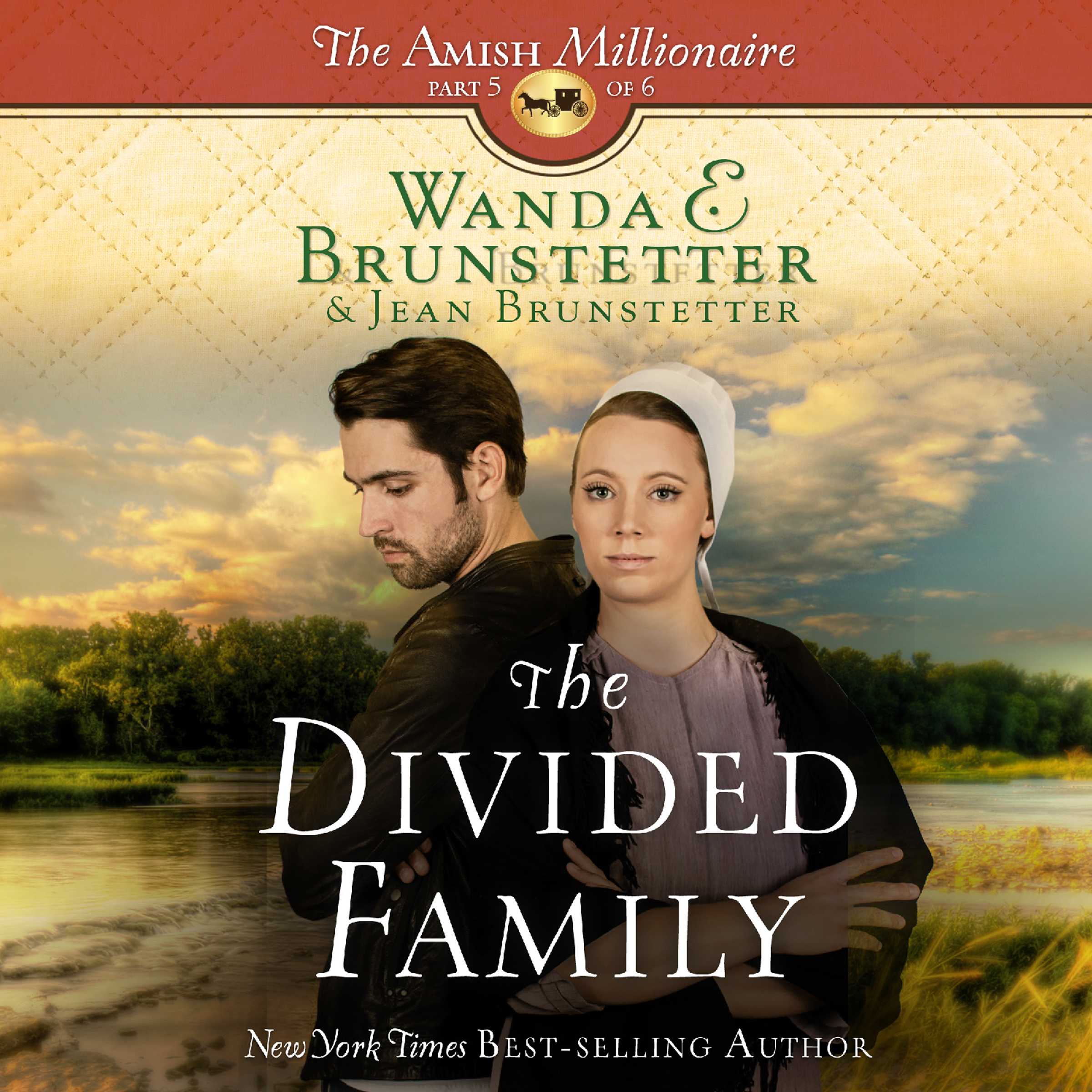 Printable The Divided Family Audiobook Cover Art