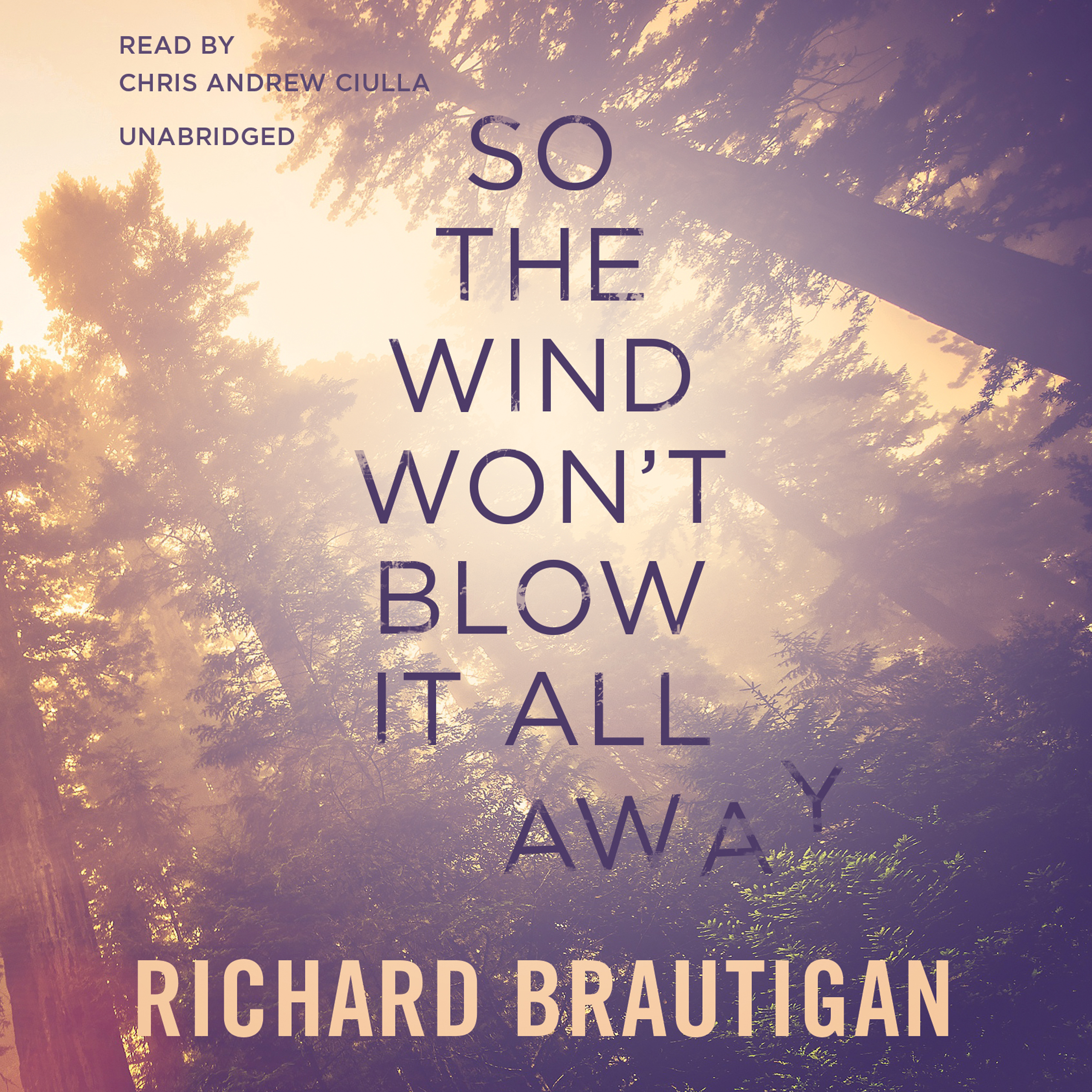 Printable So the Wind Won't Blow It All Away Audiobook Cover Art