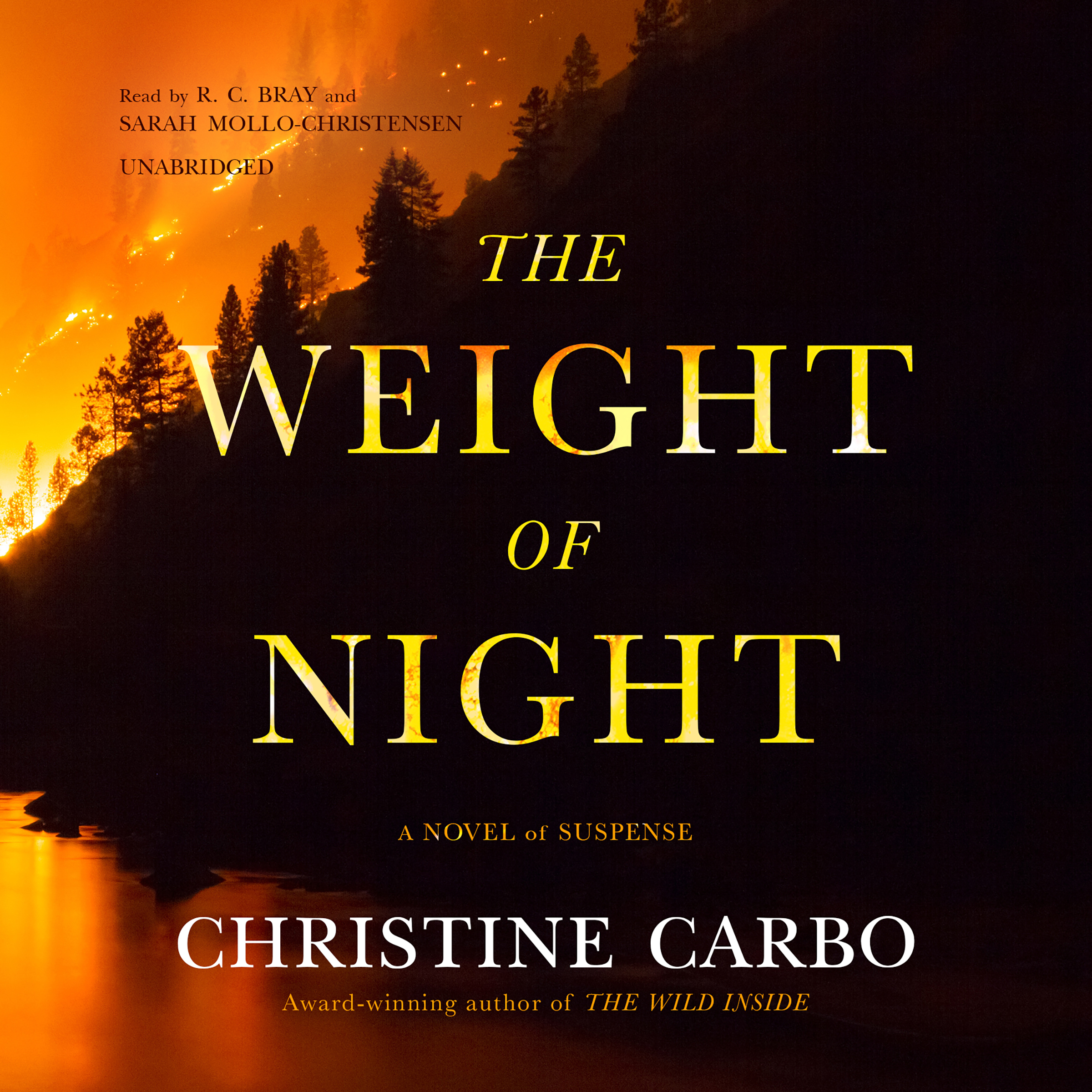 Printable The Weight of Night: A Novel of Suspense Audiobook Cover Art