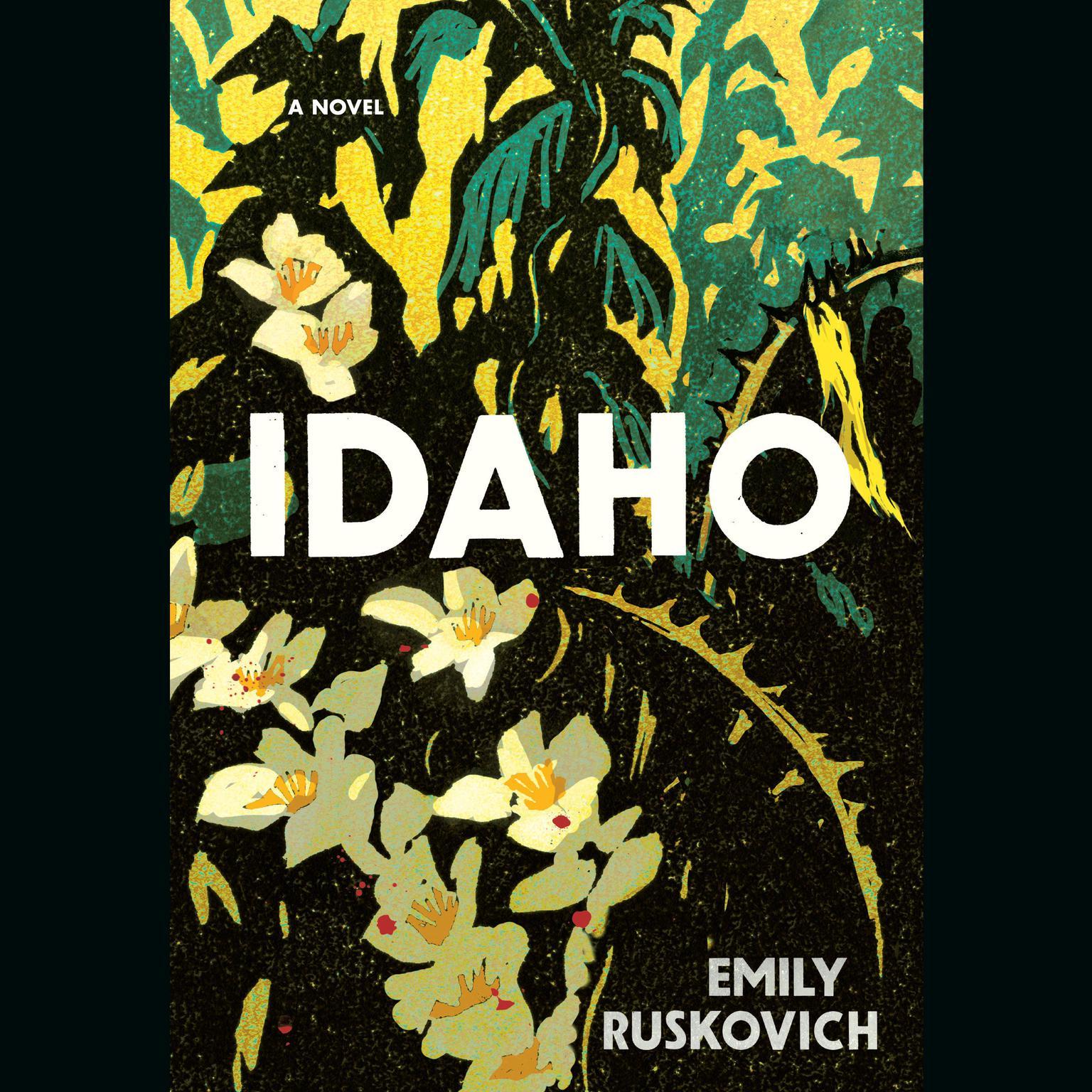 Printable Idaho: A Novel Audiobook Cover Art