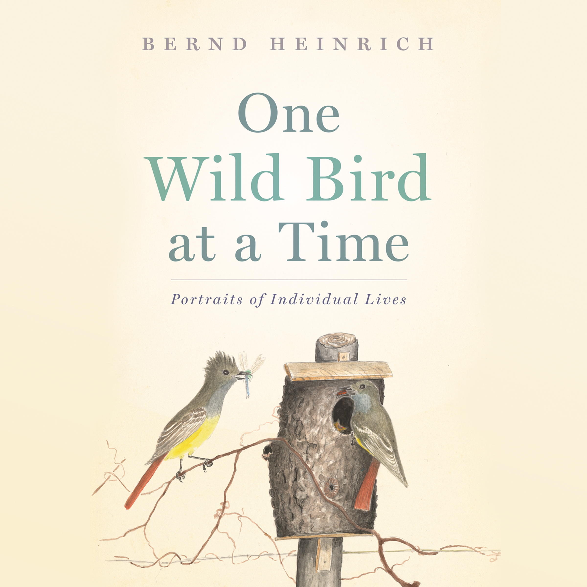 Printable One Wild Bird at a Time: Portraits of Individual Lives Audiobook Cover Art