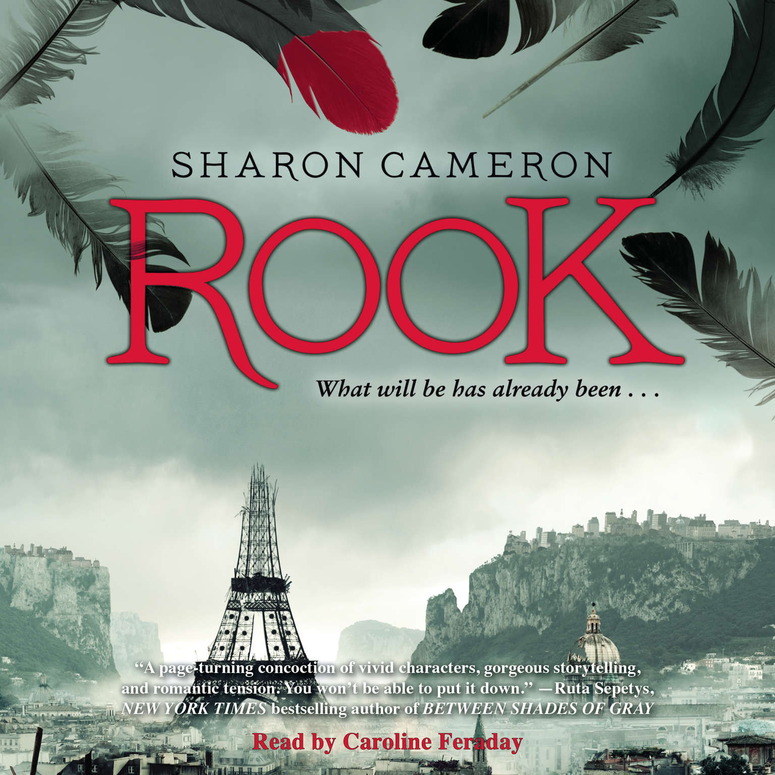 Rook Audiobook, by Sharon Cameron