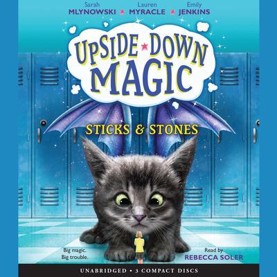 Sticks & Stones Audiobook, by Sarah Mlynowski