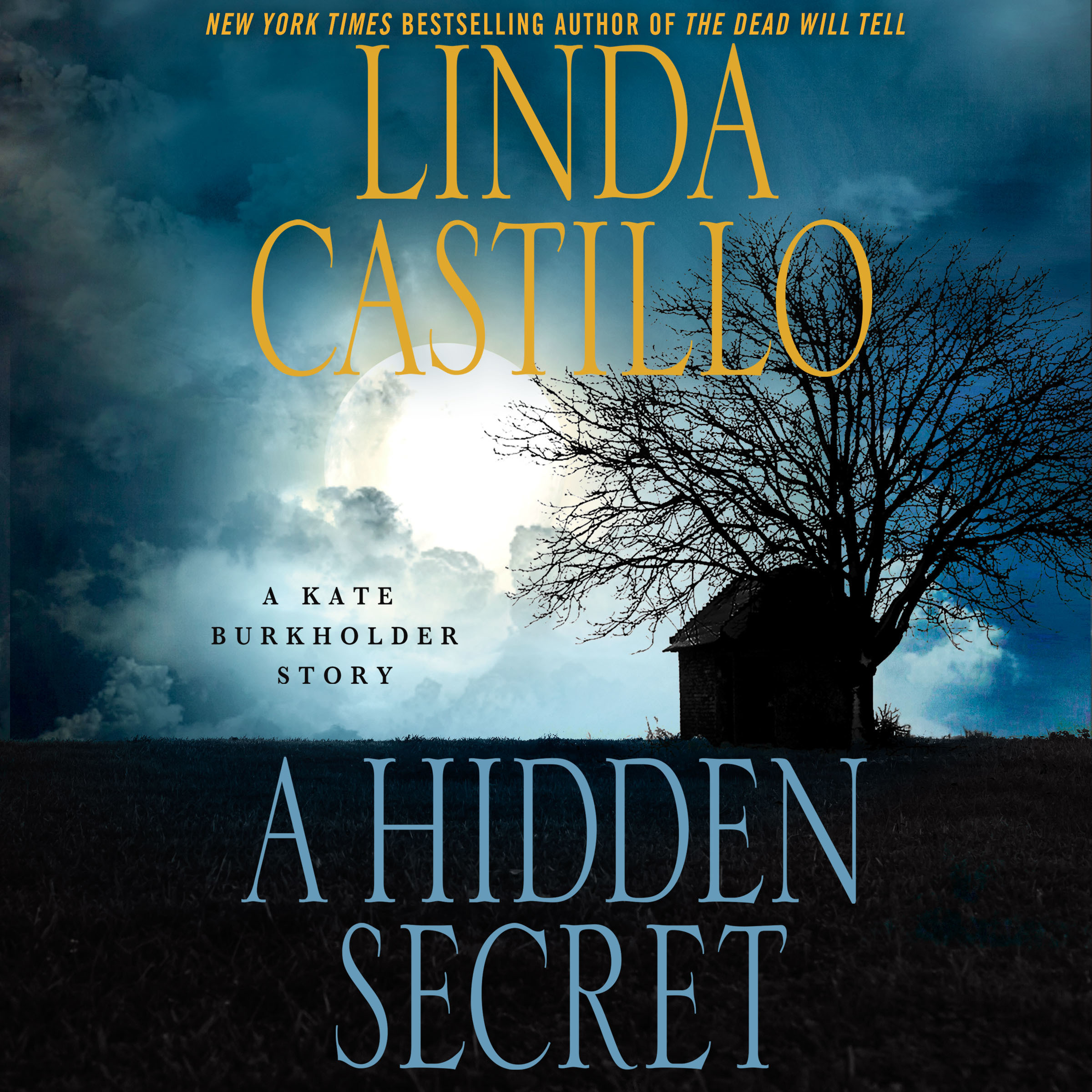 Printable A Hidden Secret: A Kate Burkholder Short Story Audiobook Cover Art
