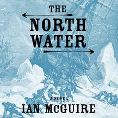The North Water: A Novel Audiobook, by Ian McGuire