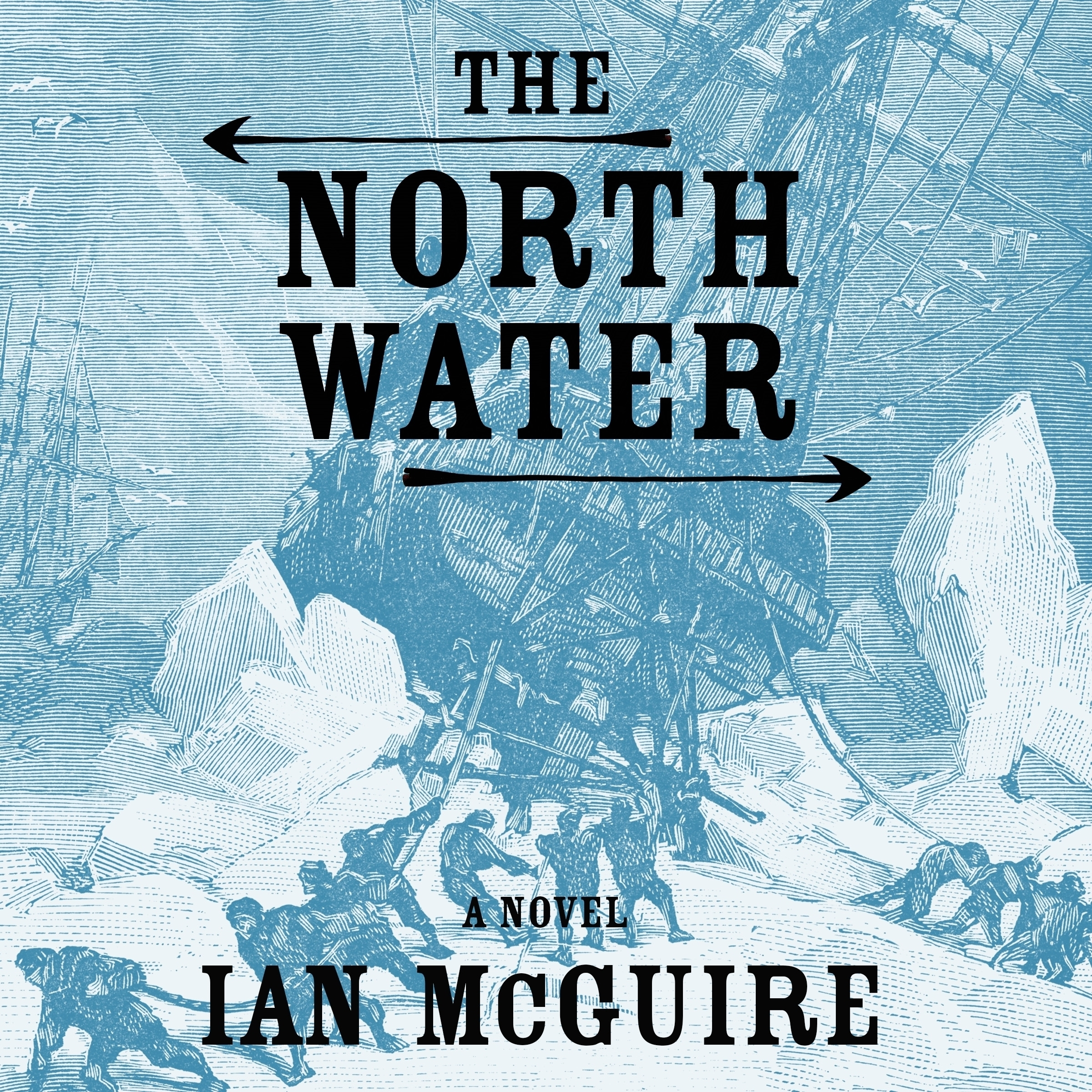 Printable The North Water: A Novel Audiobook Cover Art