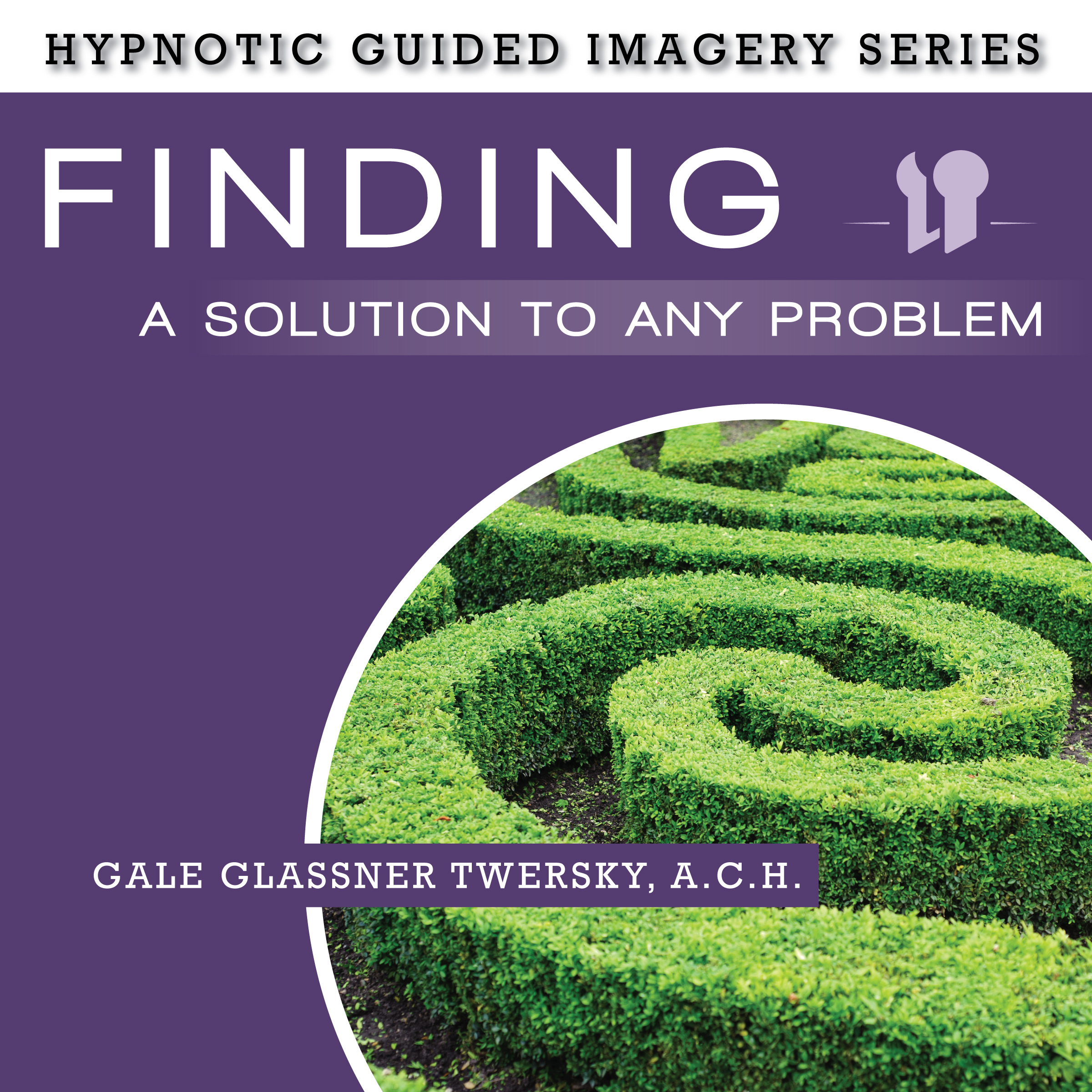 Printable Finding a Solution to Any Problem: The Hypnotic Guided Imagery Series Audiobook Cover Art