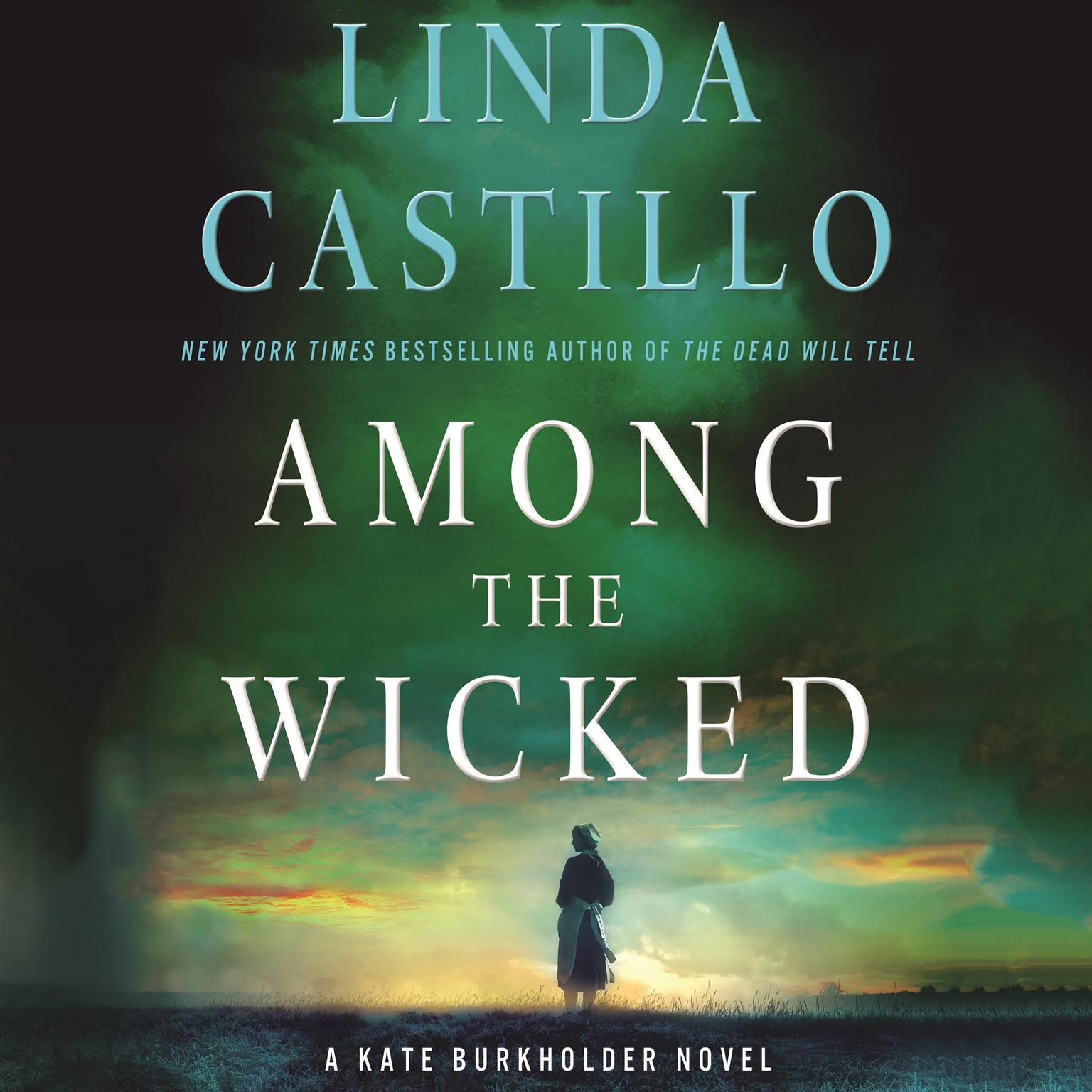 Printable Among the Wicked: A Kate Burkholder Novel Audiobook Cover Art