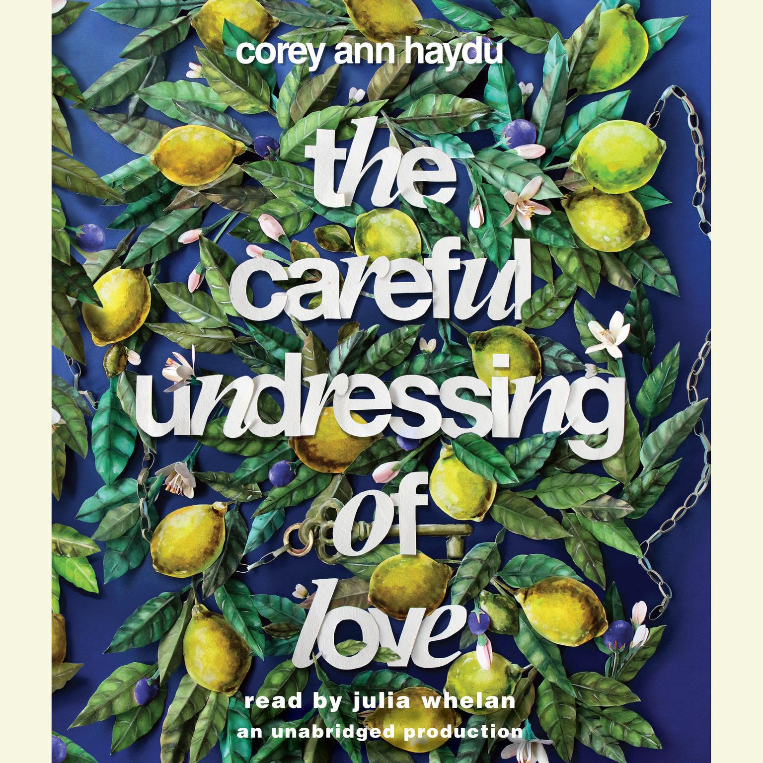 Printable The Careful Undressing of Love Audiobook Cover Art