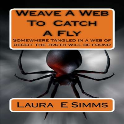Weave A Web to Catch A Fly Audiobook, by Laura E Simms