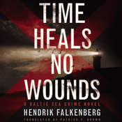 Time Heals No Wounds Audiobook, by Hendrik Falkenberg