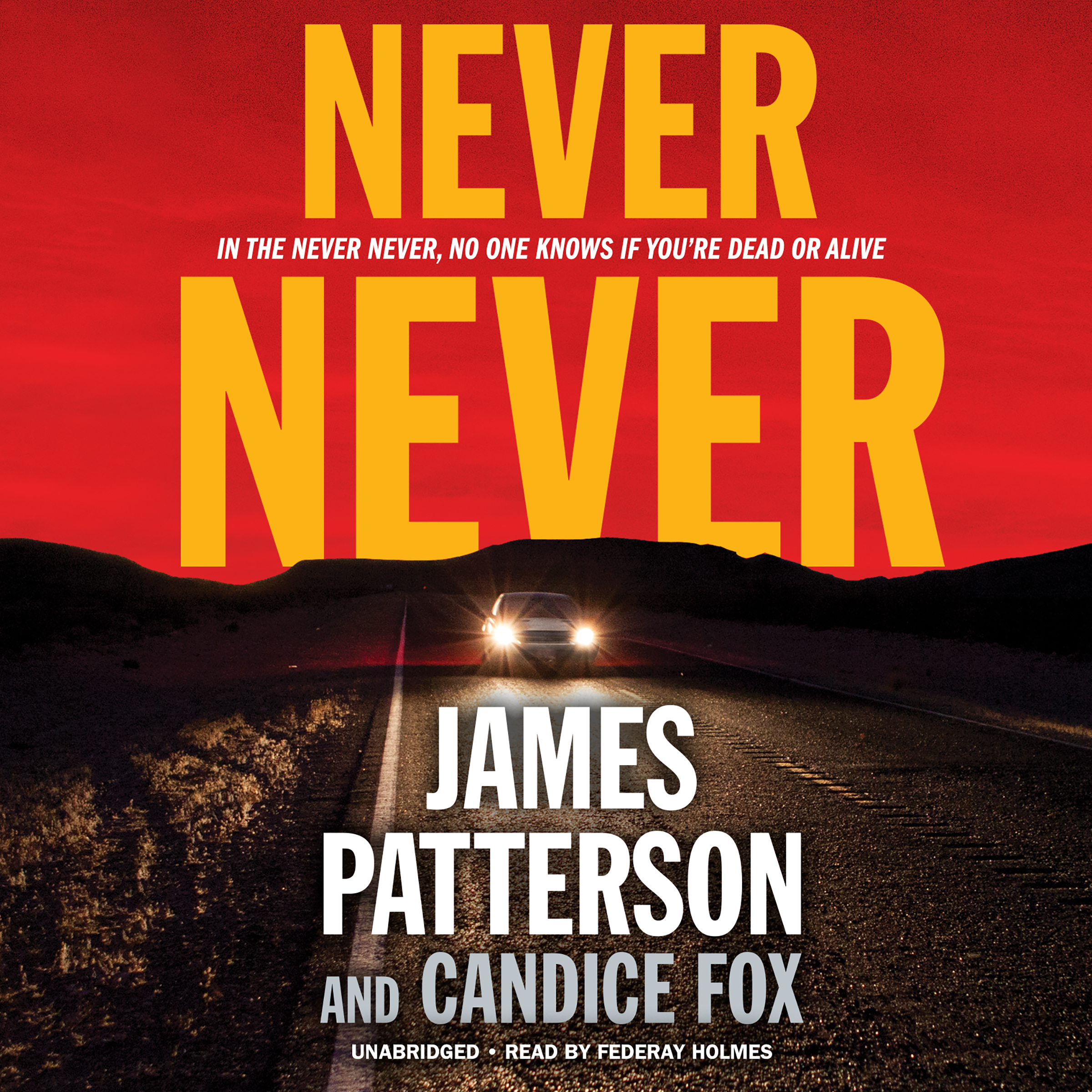 Printable Never Never Audiobook Cover Art