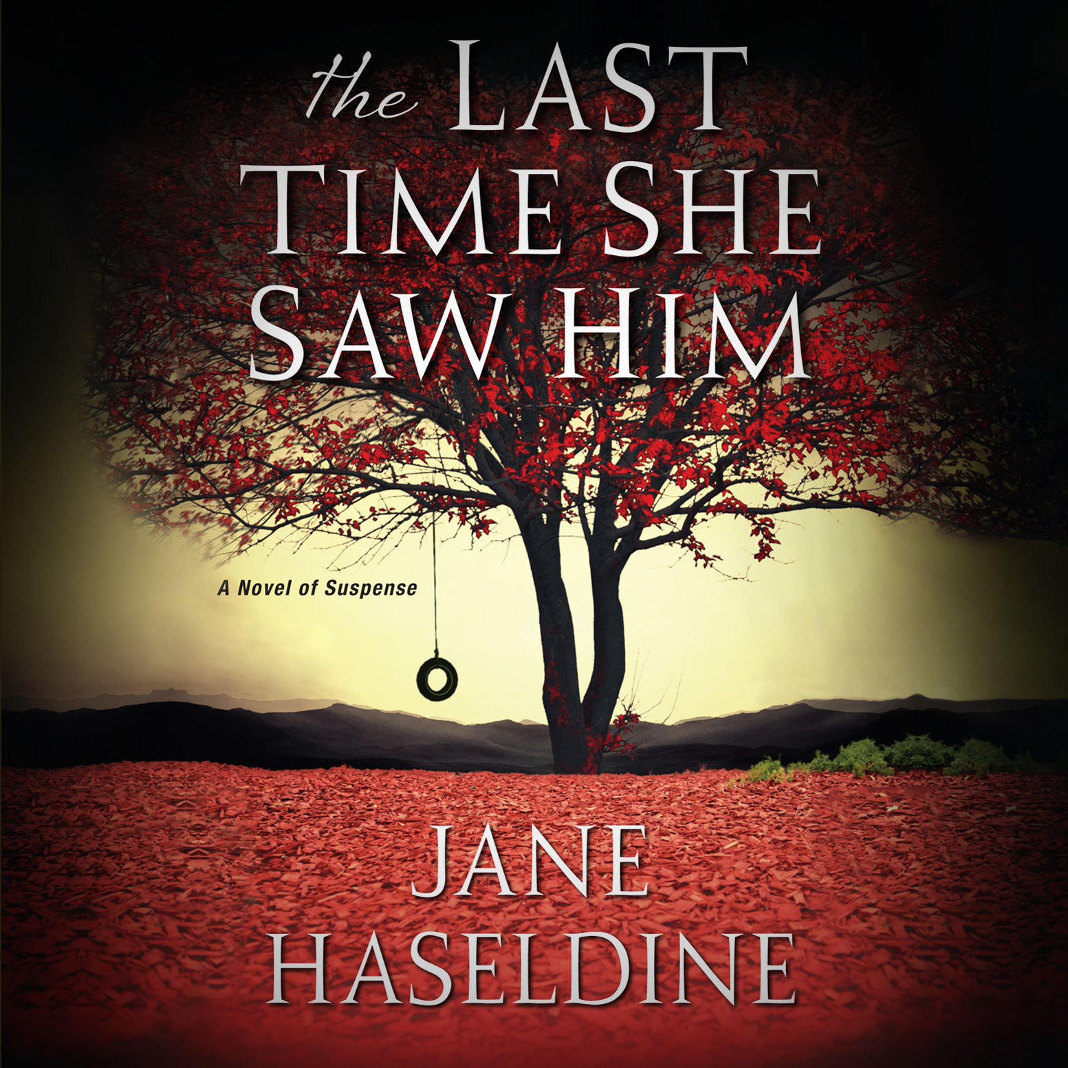 Printable The Last Time She Saw Him Audiobook Cover Art