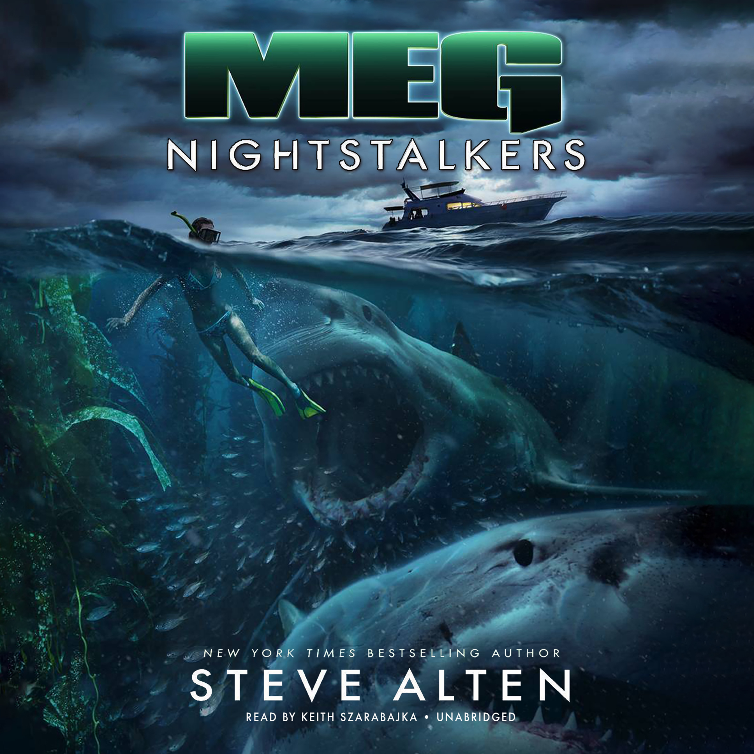 Printable Meg: Nightstalkers Audiobook Cover Art