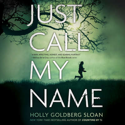 Just Call My Name Audiobook, by Holly Goldberg Sloan
