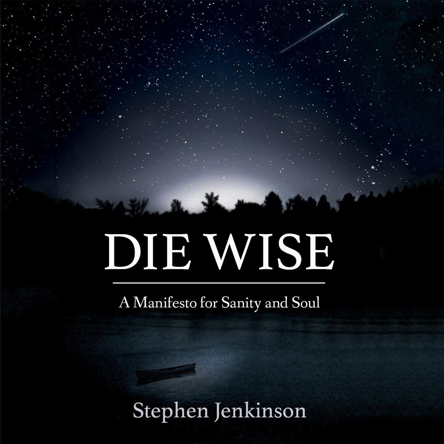 Printable Die Wise: A Manifesto for Sanity and Soul Audiobook Cover Art