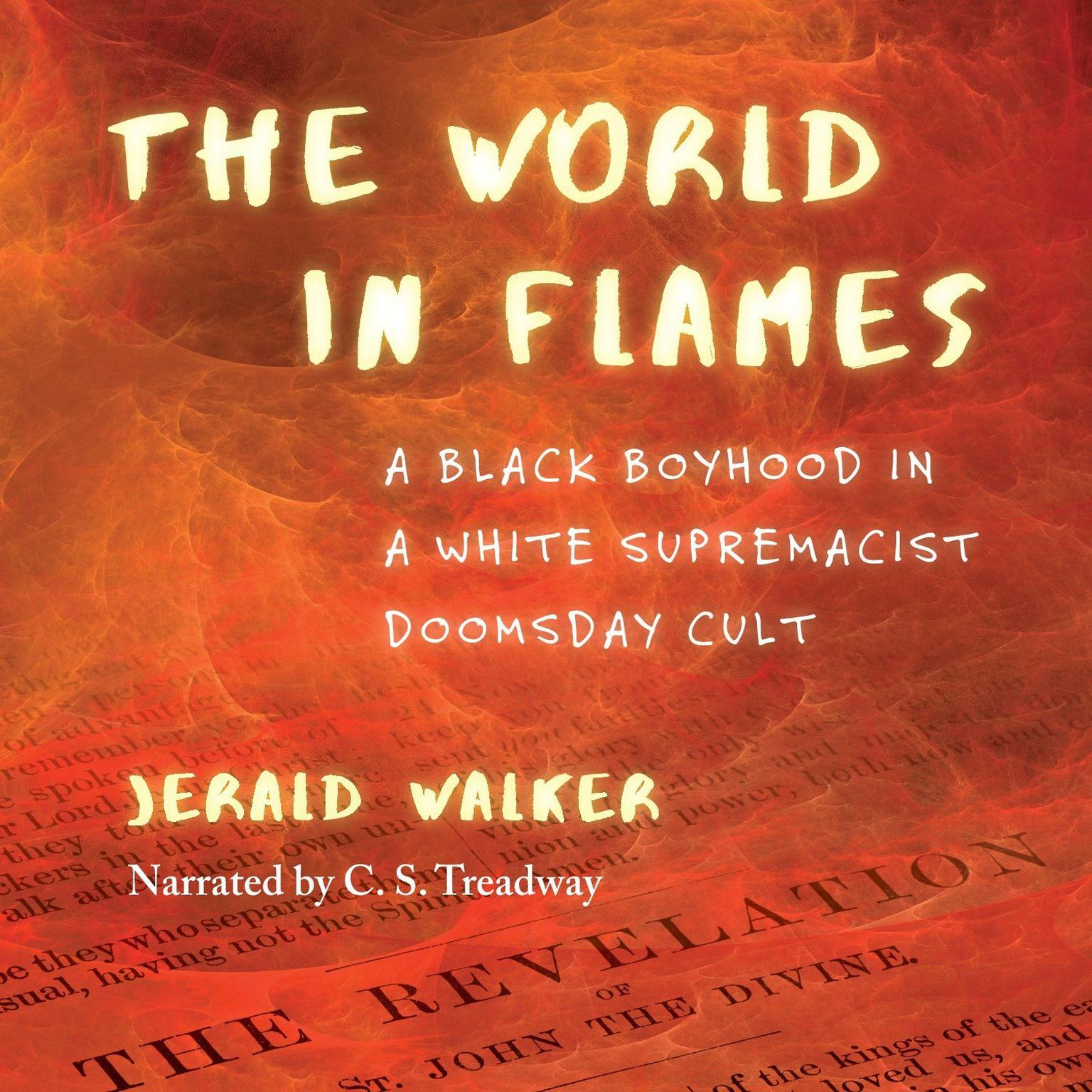 Printable The World in Flames: A Black Boyhood in a White Supremacist Doomsday Cult Audiobook Cover Art