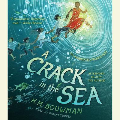 A Crack in the Sea Audiobook, by H. M. Bouwman