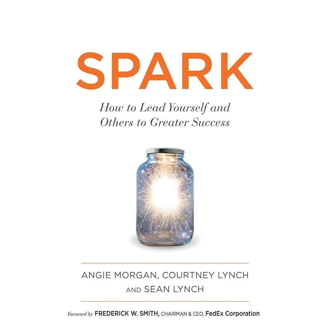 Printable Spark: How to Lead Yourself and Others to Greater Success Audiobook Cover Art