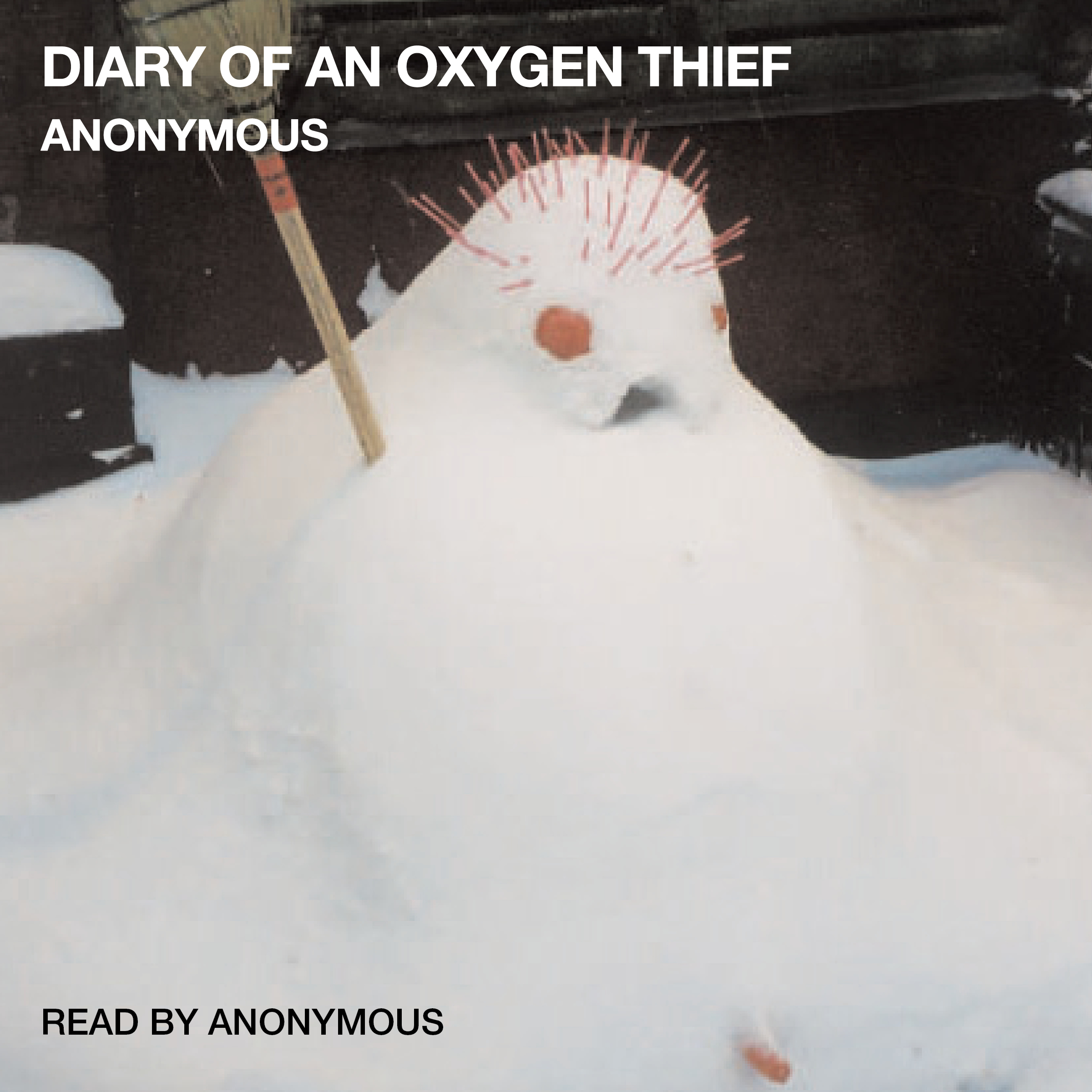 Printable Diary of an Oxygen Thief Audiobook Cover Art