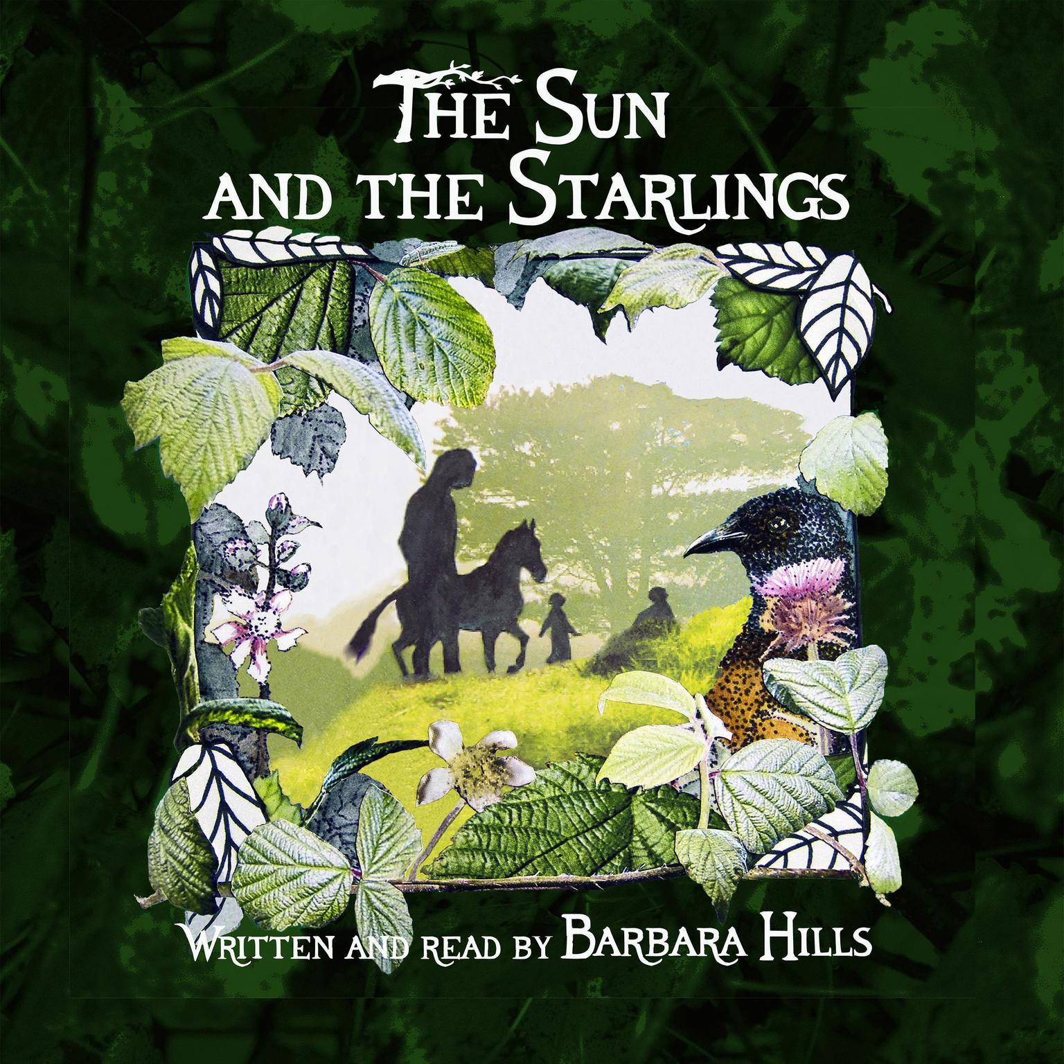 Printable The Sun and the Starlings Audiobook Cover Art