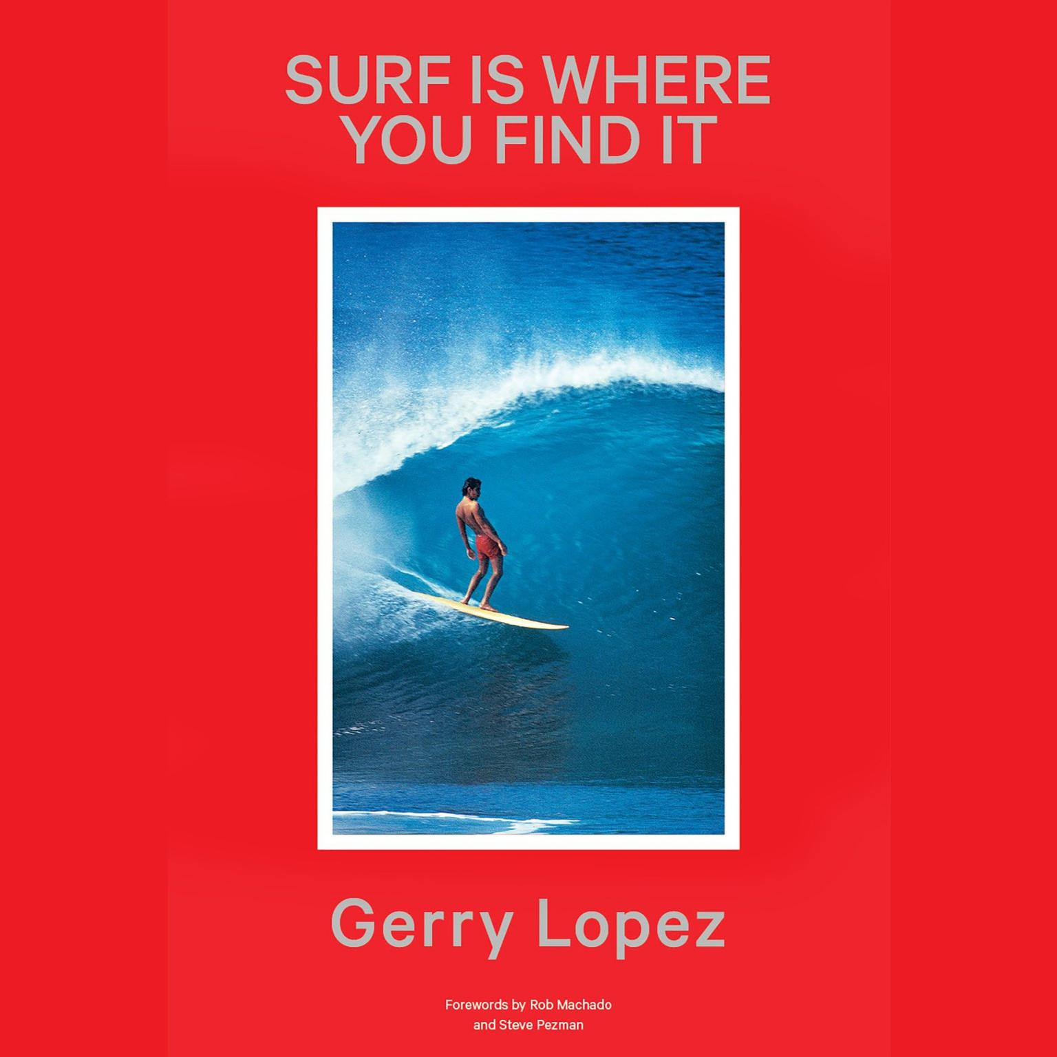 Printable Surf Is Where You Find It Audiobook Cover Art