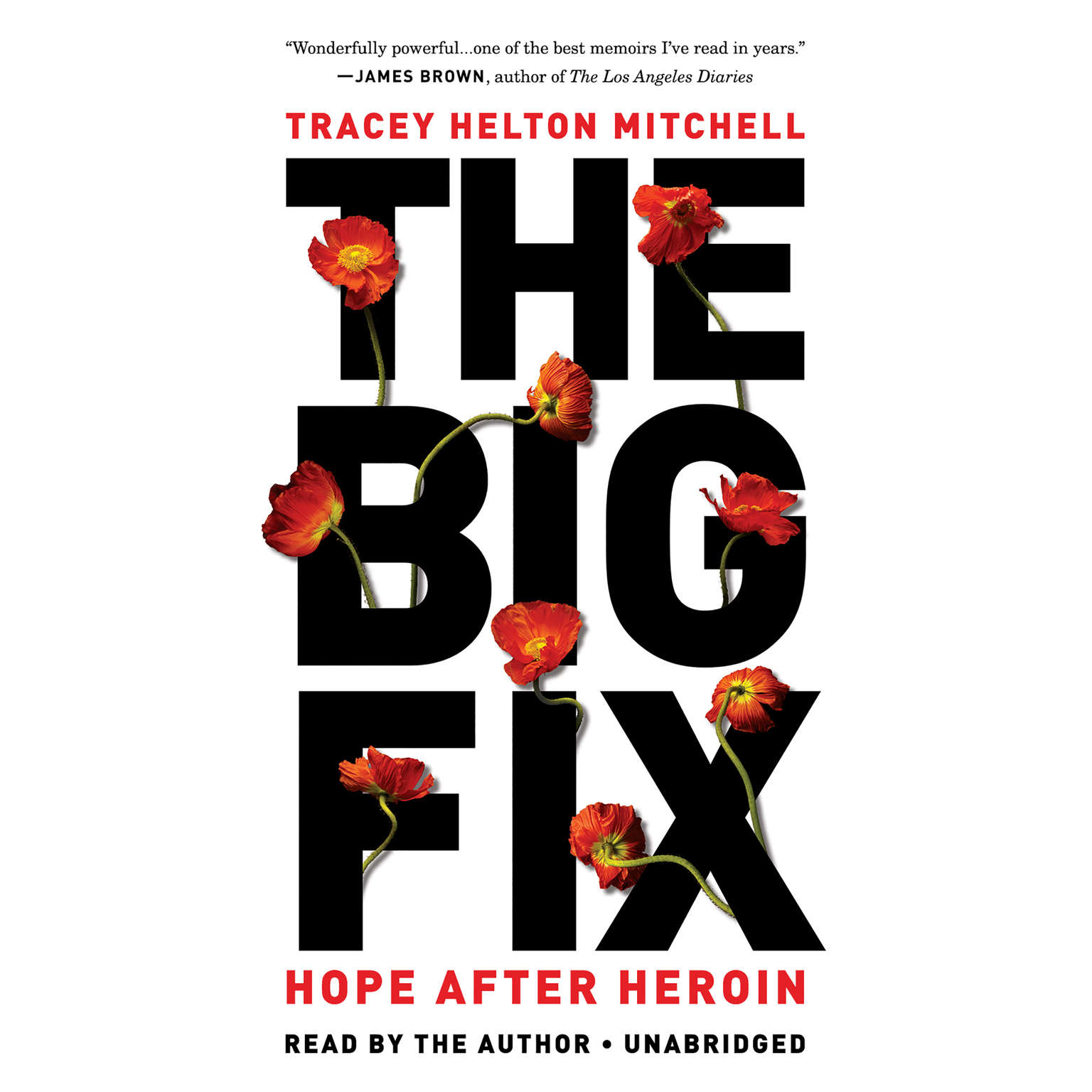 Printable The Big Fix: Hope After Heroin Audiobook Cover Art