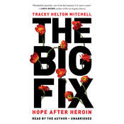The Big Fix: Hope After Heroin, by Tracey Helton Mitchell