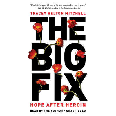 The Big Fix: Hope After Heroin Audiobook, by Tracey Helton Mitchell
