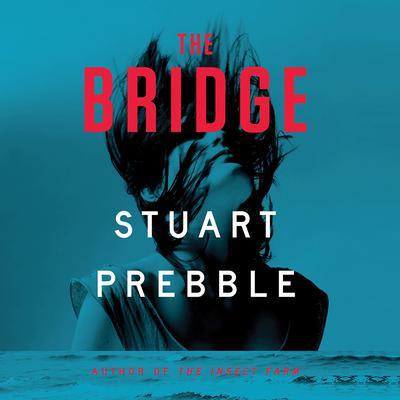 The Bridge Audiobook, by Stuart Prebble