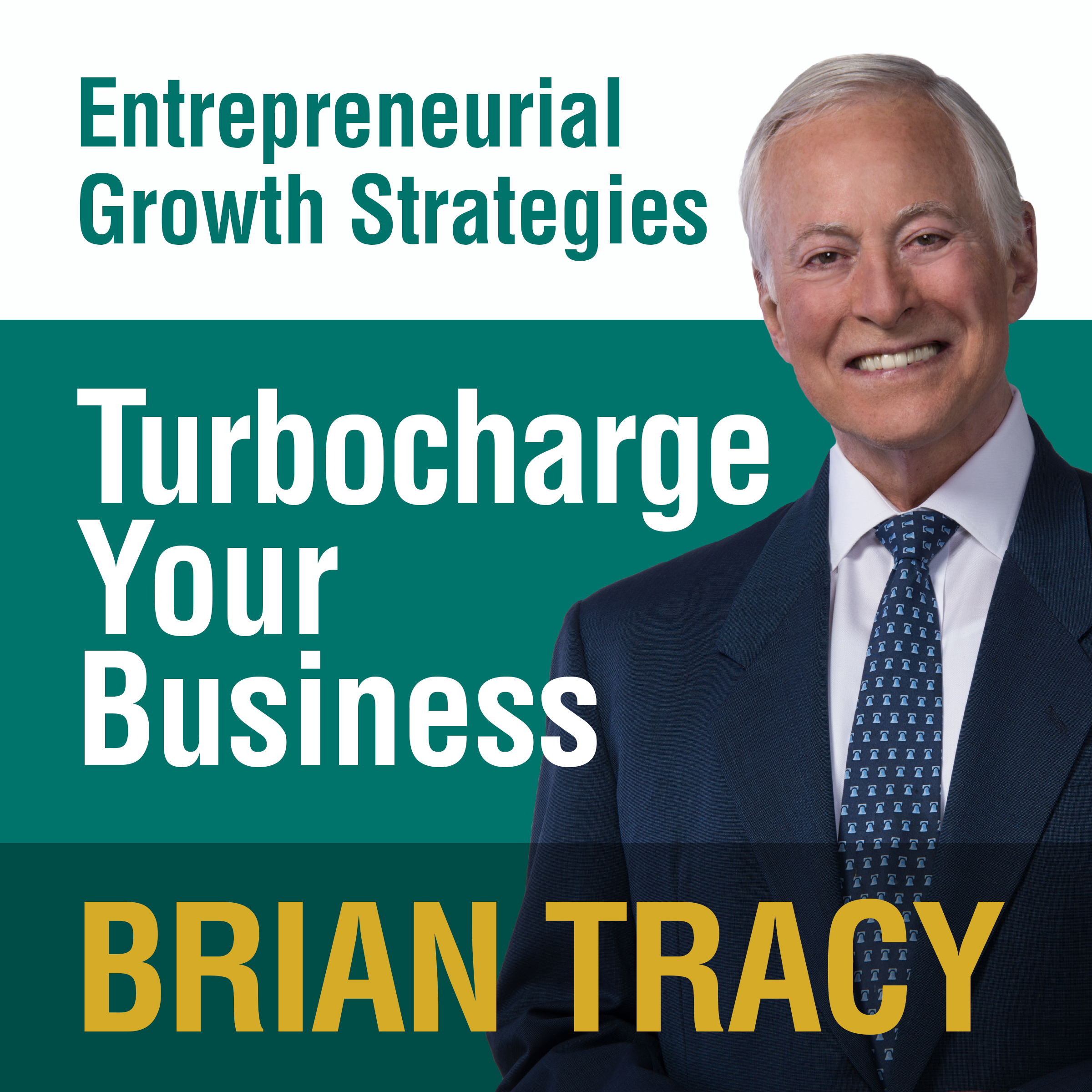 Printable Turbocharge Your Business: Entrepreneural Growth Strategies Audiobook Cover Art