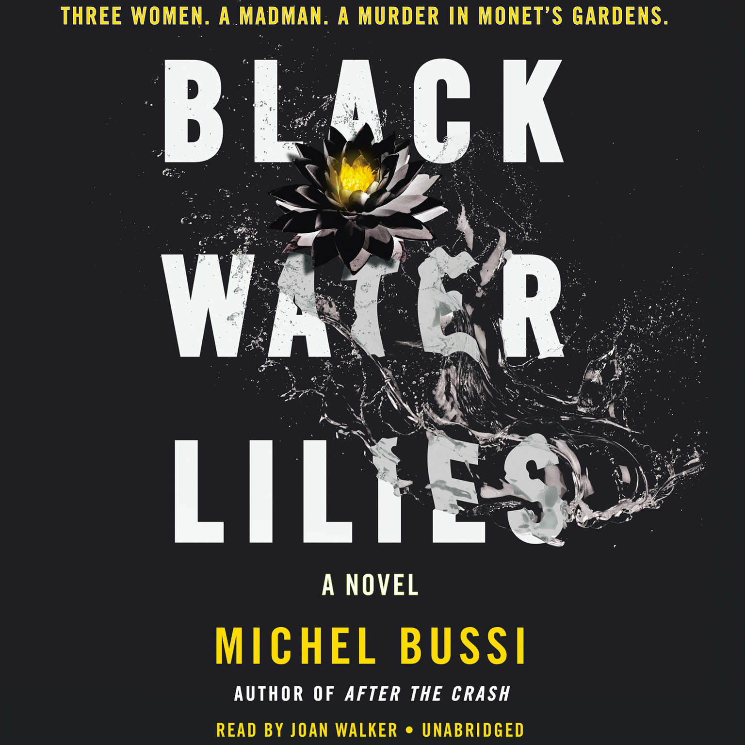 Printable Black Water Lilies: A Novel Audiobook Cover Art