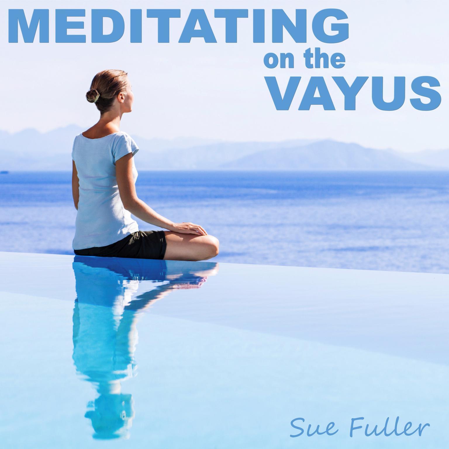 Printable Meditating on the Vayus Audiobook Cover Art