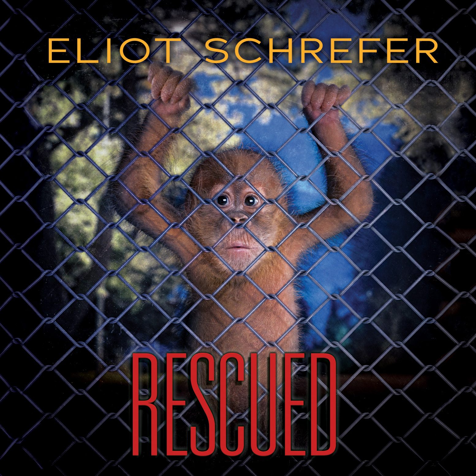 Printable Rescued Audiobook Cover Art
